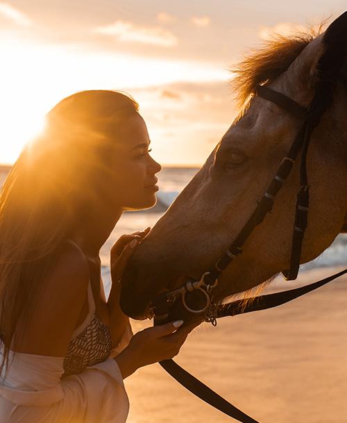 photo--activities-horseriding-2